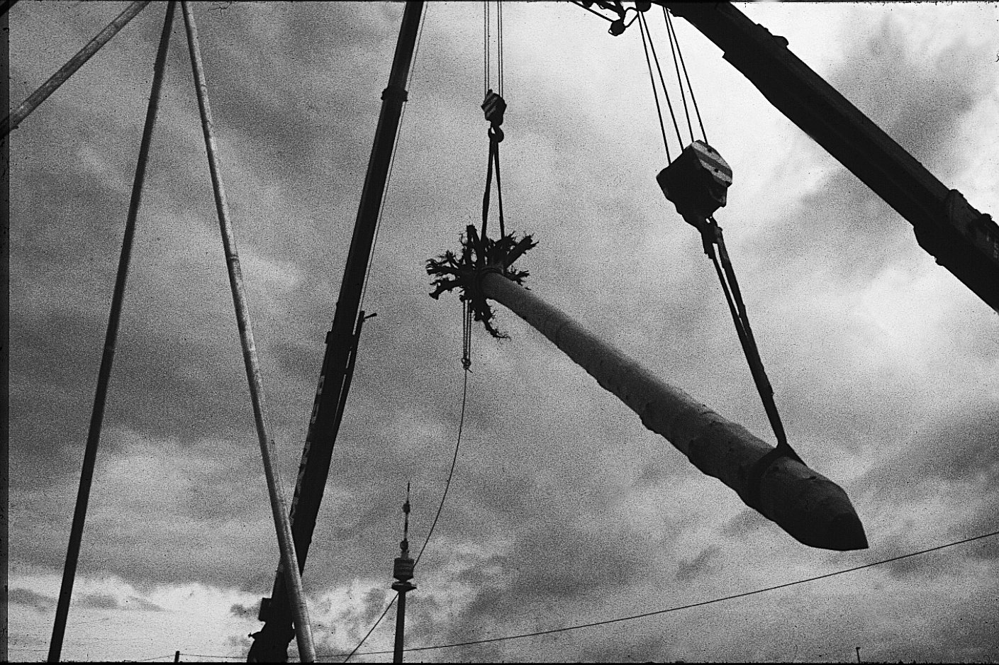 Building the Hanging Tree by Herman Prigann, 1985